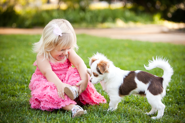 toddler girl and puppy