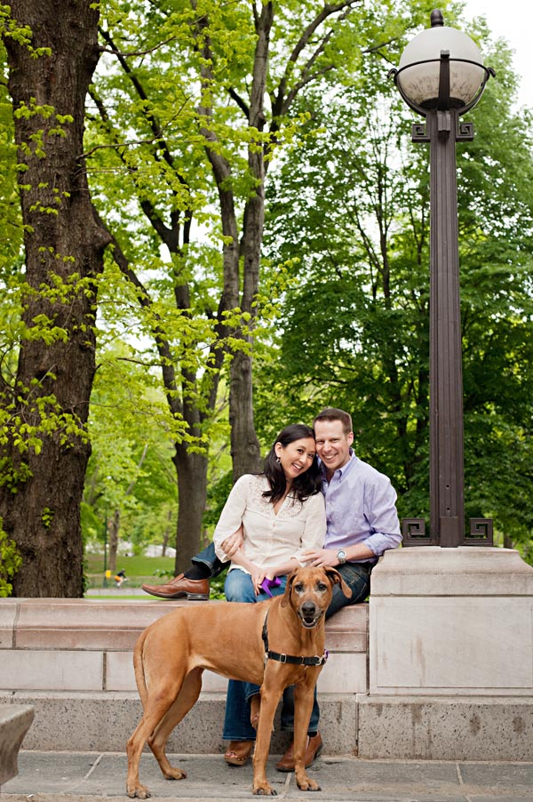 Rhodesian Ridgeback, NYC dog-engagement portraits
