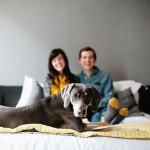 dog, yellow striped socks, yellow scarf