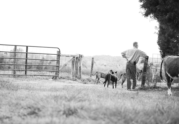 © McGraw Photography | farm dogs,  Country-dogs