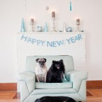Happy-New-Year-3-dogs