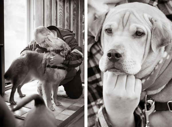 © Alice G Patterson Photography | Syracuse lifestyle dog photographer, pets and their people portraits