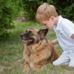Boy-Kisses-Dogs-Ear
