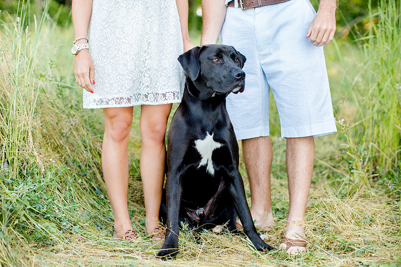 Picnic Engagment Session, rescue-dog