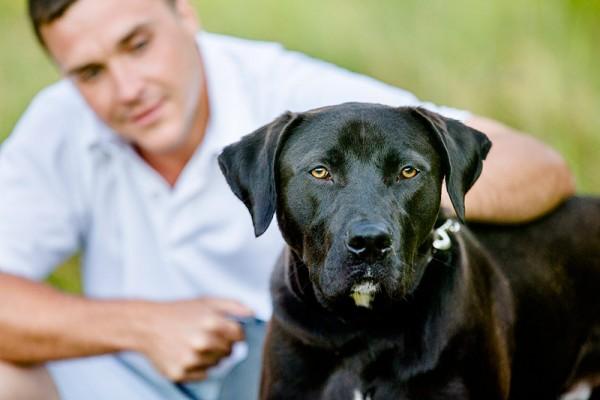 CNY photographer, black-dog-white-star