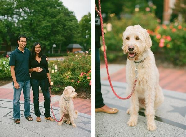 Chapel Hill portrait photography,