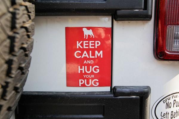 DFW-Pug-Rescue, keep-calm-and-hug-your-pug