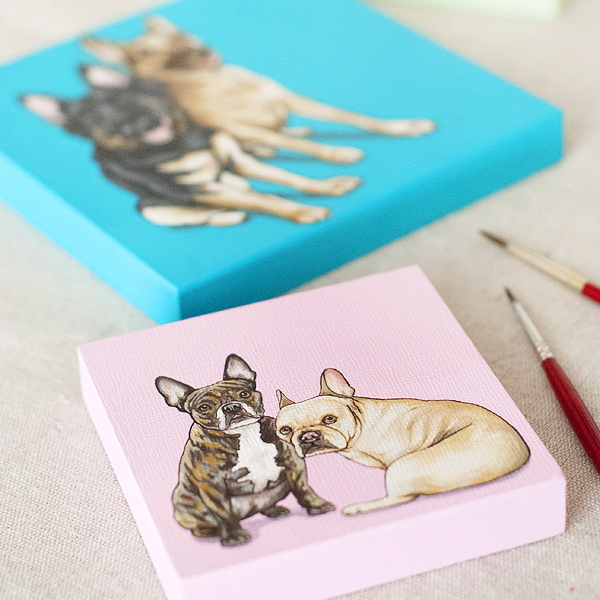 custom-paintings-The-Pet-Shop