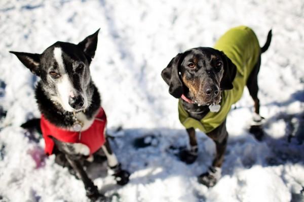 Theo-Lila-in-snow-gear
