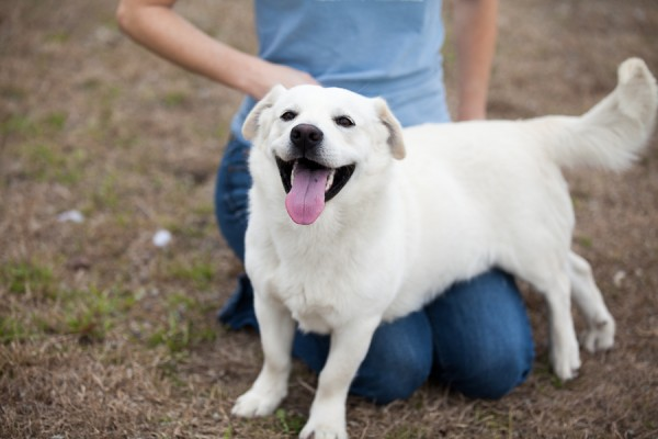 Humane Society of Eastern Carolina