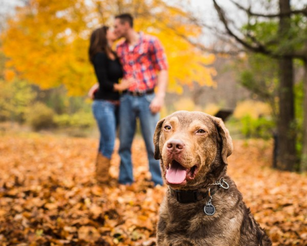 Chessy,engagement-session-with-dog