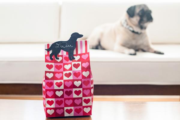 Pug on white sofa, Mashup Valentines, easy vegan treats for dogs