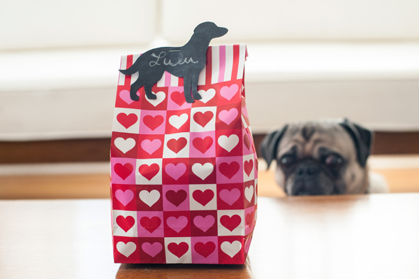 DIY-Vegan-Dog-Treats-Valentines-Day-Presents,