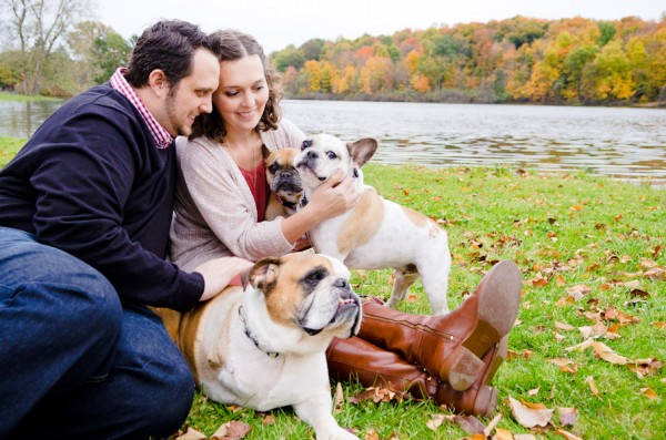 Endearing-Frenchie, engagement-photo-session-with-dogs