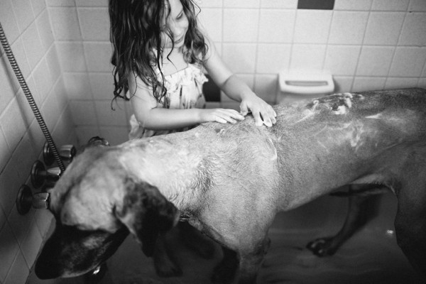 Little-girl-big-dog, bathing-a-Great-Dane, candid-shot
