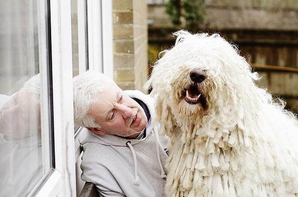 © Amber Allen,  Mrs Mutts London Pet Photography, Komondor-and-guardian-before-Crufts