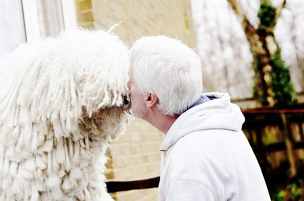 © Amber Allen,  Mrs Mutts London Pet Photography, love-between-man-and-dog