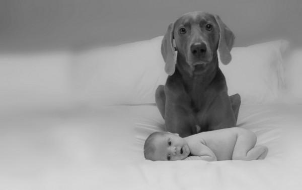 Lifestyle-family-pet-photographer