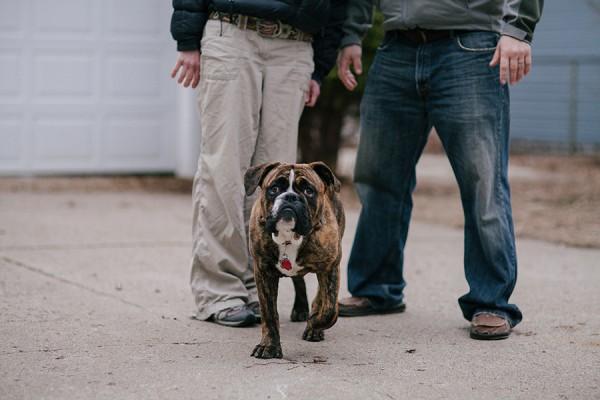 Minneapolis-family-dog-portrait