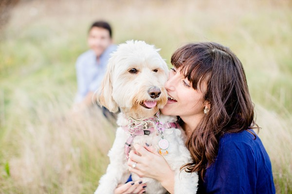 © Leo Timoshuk Photography, mini-Labradoodle- save-the-date