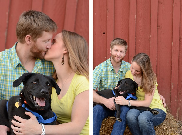 © Eureka Photography, country-engagement-photos-with-Labrador-mix