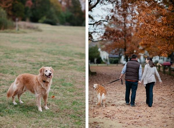 VA-lifestyle-dog-photo © Lauryn Galloway Photography
