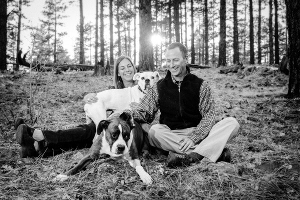 dogs-family-portrait, Boxers