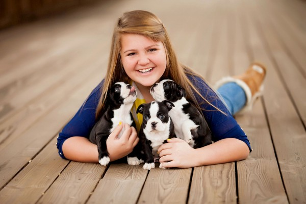 Boston-Terriers-and-girl-family-photographer