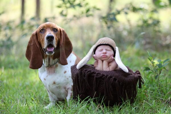 © Two Chics Photography, Basset-hound-and-newborn