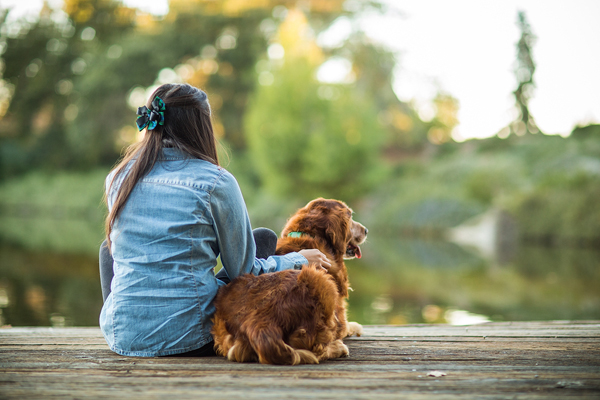© Anthony Helton, Purple Collar Pet Photography, Girl-and-her-retriever