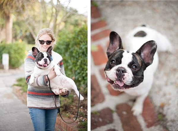 © Britt Croft Photography, adorable-French-Bulldog
