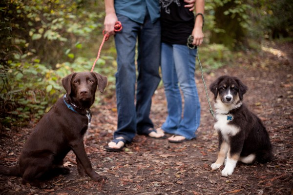 © Kim J Martin Photography, engagement-session-with-dogs