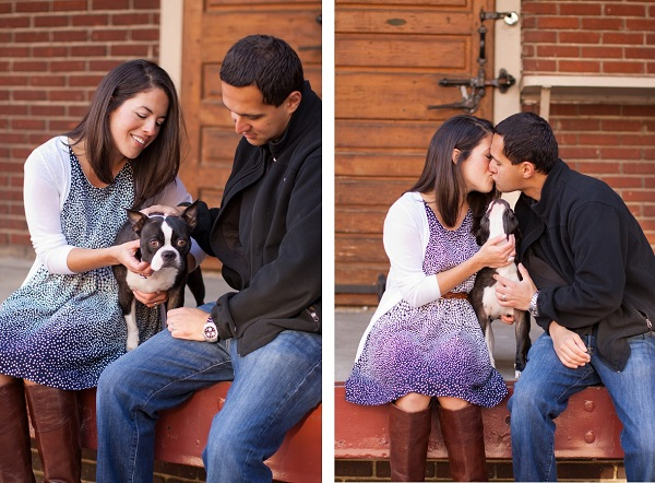 © Katie Nesbitt Photography, Boston-Terrier-and-family-lifestyle