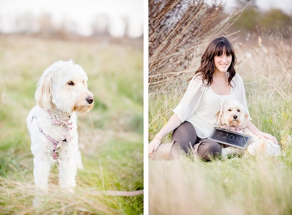 © Leo Timoshuk Photography, Mini-Labrodoodle-in-field, girl-and-her-dog