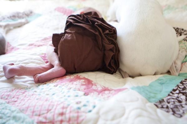© Sharon Arnoldi Photography, dog-baby-photographer