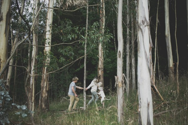© Willow & Co, dogs-family-on-an-adventure-in-the-woods