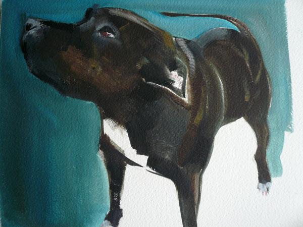 © Sally Muir, fine-art-dog-painting-Staffy-mix