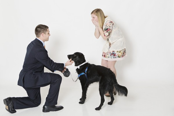 surprise proposal with dog