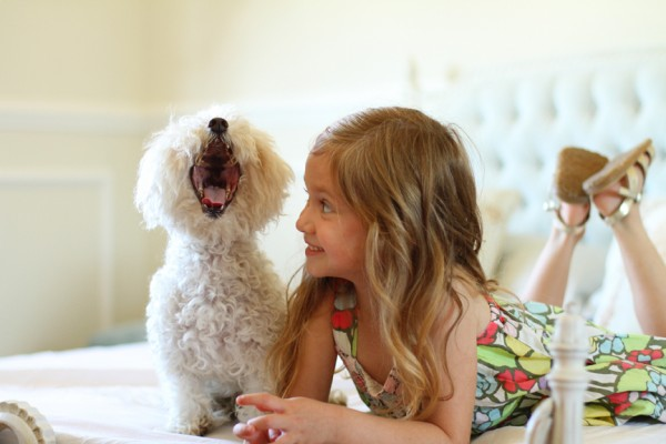 © Lucy Munoz Fotographia | Daily Dog Tag |Laughing Maltese and girl