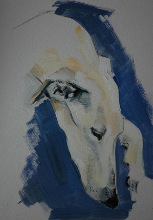 © Sally Muir,  Jack-Swan-greyhound-portrait