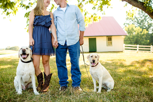 Yellow Labrador Retrievers, VA engagement session