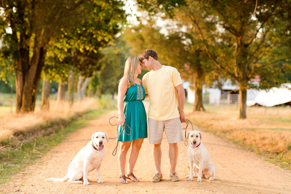 VA Wedding Photographer Katelyn James, engagement session with dogs