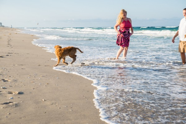 © Enduring Impressions Photography, pet-lifestyle-photography