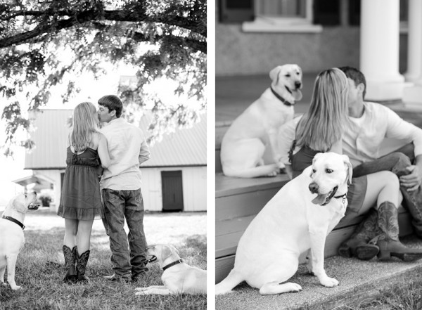 VA Wedding Photographer Katelyn James, dogs