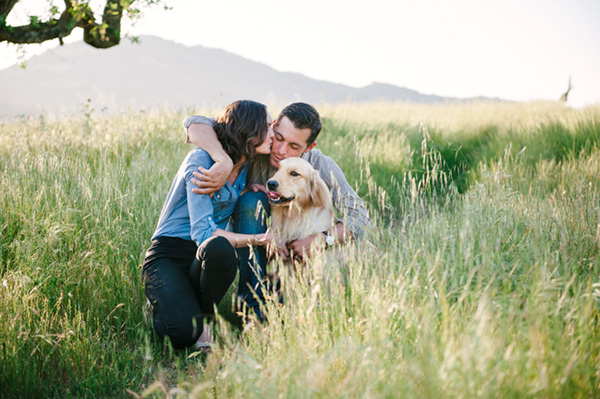 © Photo Lab Pet Photography, Golden-Retriever-and-family