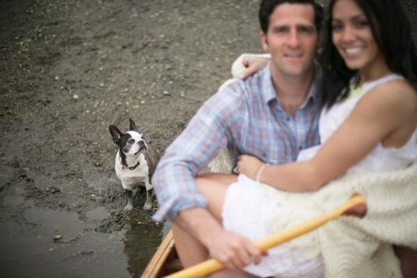 © Sarafina Photographs, Engagement-photos-with-Boston-Terrier