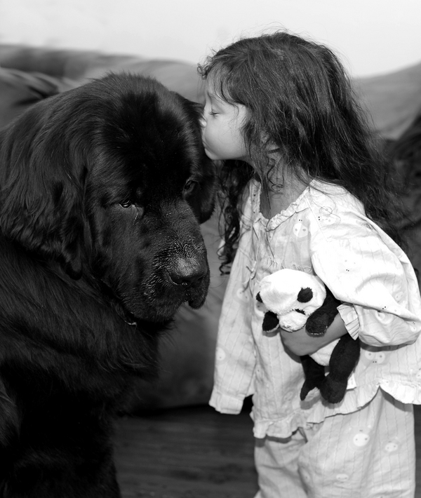 © Shanna Duffy Photography, girl-and-her-dog