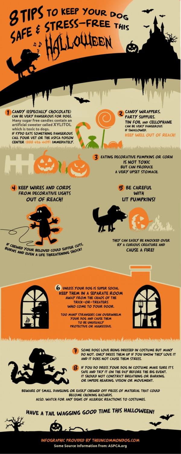 halloween-safety-tips-e1382562612814.jpg (600×1502)
