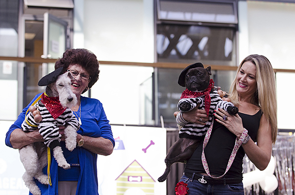 © Amber Allen, The London Phodographer, dogs-fashion-event