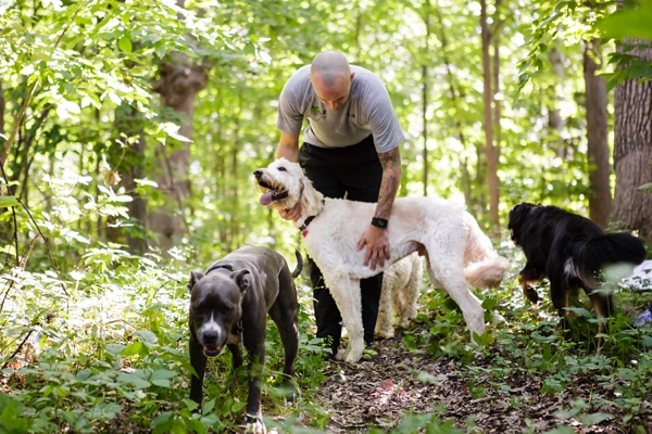 © Jen Madigan Photography, Exercise-Program-for-dogs